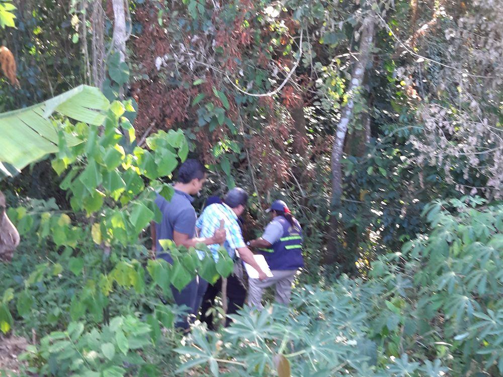 Y no son lagartos. Ministerio Público confirma que joven que fue encontrado desmembrado en La Chorrera fue asesinado