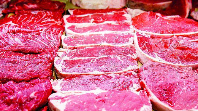 Panamá se alista para exportar carne a Estados Unidos