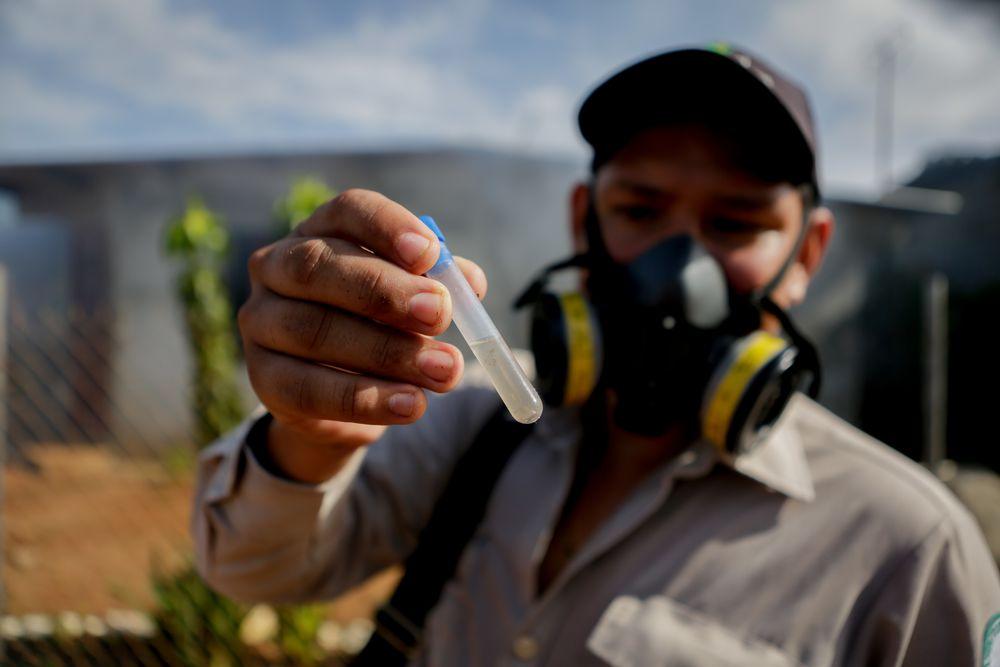 Revelan el listado de las provincias con más casos de dengue en Panamá