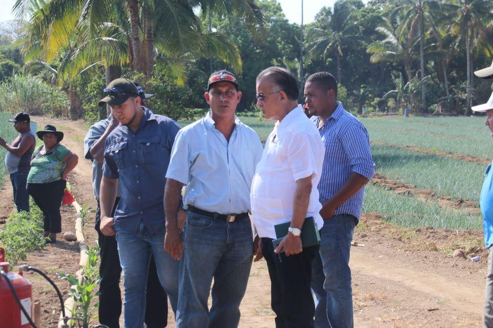 Productores panameños en pie de guerra ante las actuaciones del Gobierno