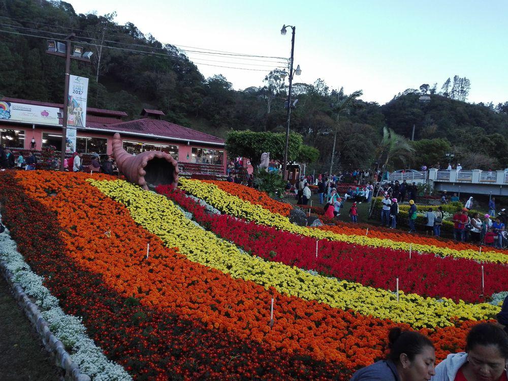 Arranca la feria de las flores y del café en Boquete
