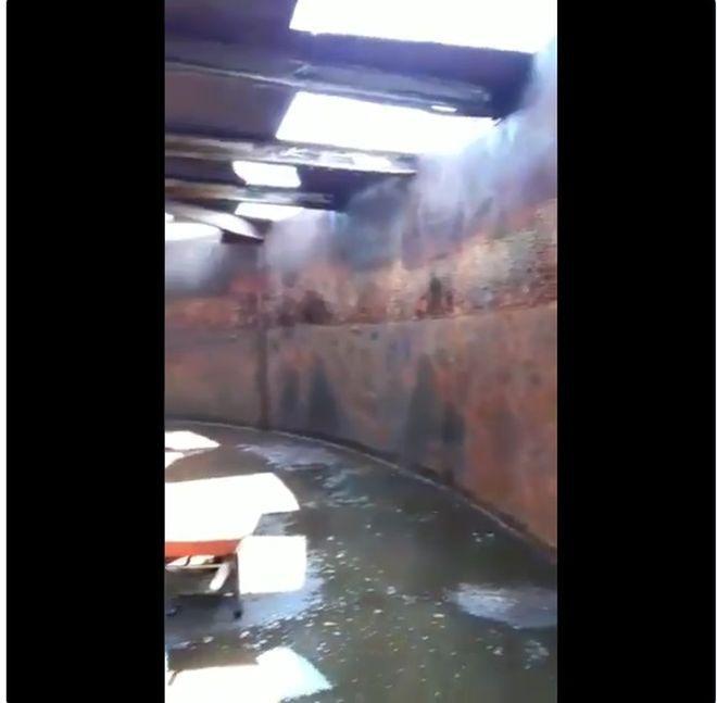 '¡Ay, Dios,¿yo tomaba esto?!' Video de tanque de agua causa alarma en San Isidro